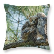 Immature Great Horned Owls Throw Pillow