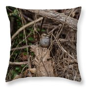 Immature White-throated Sparrow Throw Pillow