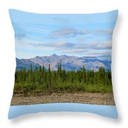 Imminent Riverbed Throw Pillow
