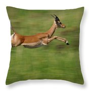 Impala  Running And Leaping Throw Pillow