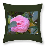 Imperfect Beauty Throw Pillow