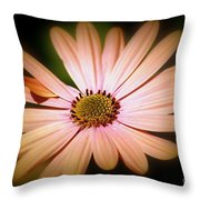 Imperfect Glow Throw Pillow