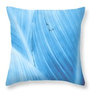 Imperfection Blue Version Throw Pillow