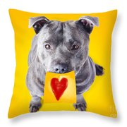 Imploring Staffie With A Sticky Note On His Mouth Throw Pillow