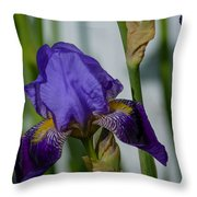 Impossible Imagined Iris Throw Pillow