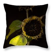 Impression At Night Throw Pillow