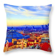 Impressionistic Photo Paint Gs 011 Throw Pillow by Catf