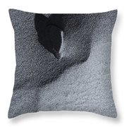 Impressions In The Sand Throw Pillow
