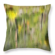 Impressions Of Autumn Throw Pillow