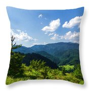 Impressions Of Mountains And Forests And Trees Throw Pillow