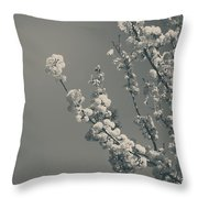 In A Beautiful World Throw Pillow
