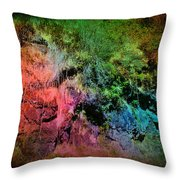 In A Colorful World Throw Pillow