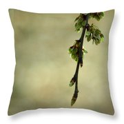 In A Dark And Silent Place Throw Pillow