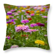 In A Field Of Flowers Throw Pillow