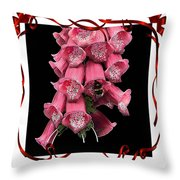 In A Frame Throw Pillow