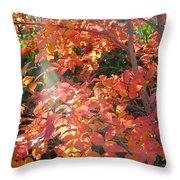 In A Golden Light 001 Throw Pillow