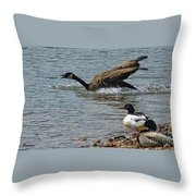 In A Hurry Throw Pillow