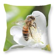 In A Mock Orange Blossom Throw Pillow