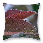 In A Row With Verse Throw Pillow