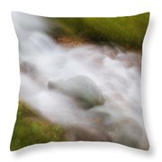 In A Rush Throw Pillow