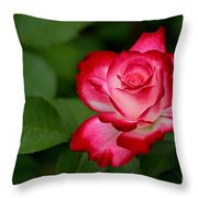 In All It's Beauty Throw Pillow