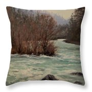 In All Seasons Throw Pillow