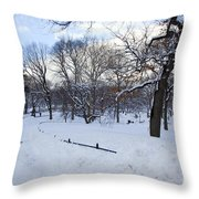 In Central Park Throw Pillow