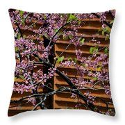In Contrast Throw Pillow