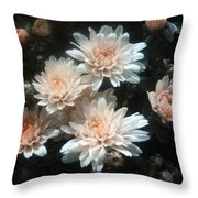 In Days Past. Throw Pillow