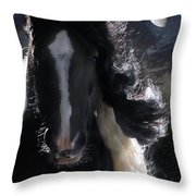 In Dreams... Throw Pillow