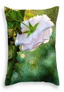 In Early Morning Light - White Rose Throw Pillow