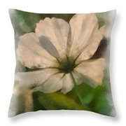 In Every Flower See A Miracle 01 Throw Pillow