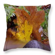 In Eveything Beauty Abides Throw Pillow