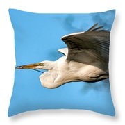 In Flight With Stick Throw Pillow