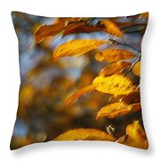 In Full Color Throw Pillow