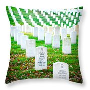 In Honor And Tribute Throw Pillow by Greg Fortier