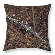 In-line Throw Pillow