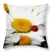 In Love With A Ladybug And A Daisy Throw Pillow