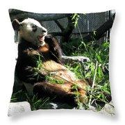 In Need Of More Sleep. Er Shun Giant Panda Series. Toronto Zoo Throw Pillow