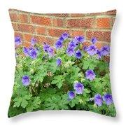 In Neighbours Garden Throw Pillow