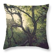 In Our Own Little Magical World Throw Pillow