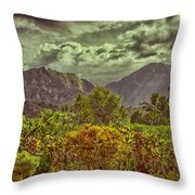 In Search Of The Dinosaurs-jurassic Park Throw Pillow