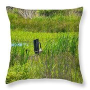 In Secret Places Throw Pillow