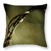 In Shadows And Light Throw Pillow
