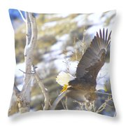 In Take Off  Throw Pillow