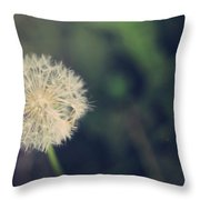 In The Afterglow Throw Pillow