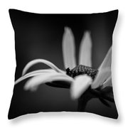 In The Arms Of Night Throw Pillow