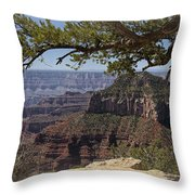 In The Beauty Throw Pillow
