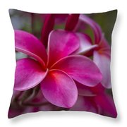 In The Beginning Of Time . . .  Throw Pillow