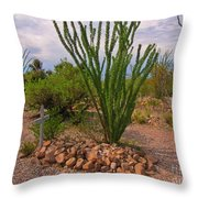 In The Boothill Cemetary Throw Pillow
